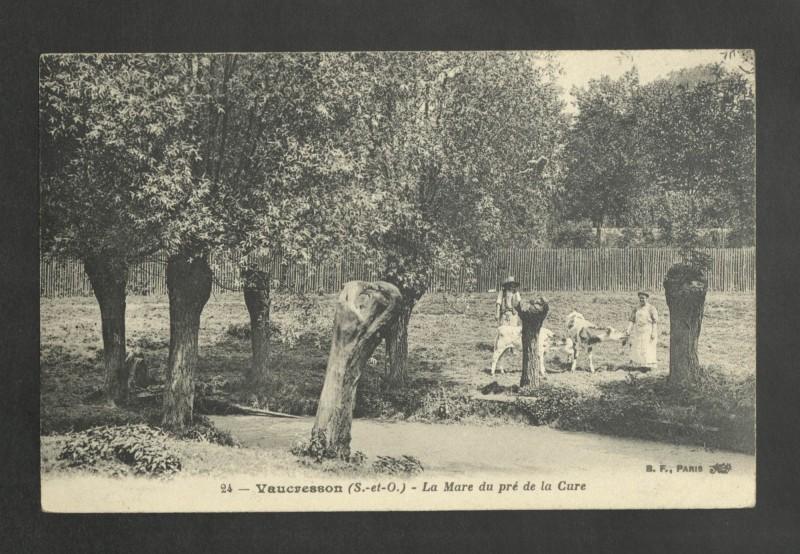 Carte postale ancienne La Mare du pré de la Cure à La Celle-Saint-Cloud