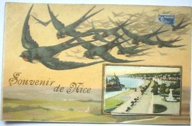 Carte postale ancienne 06-Souvenir de Nice-Hirondelles