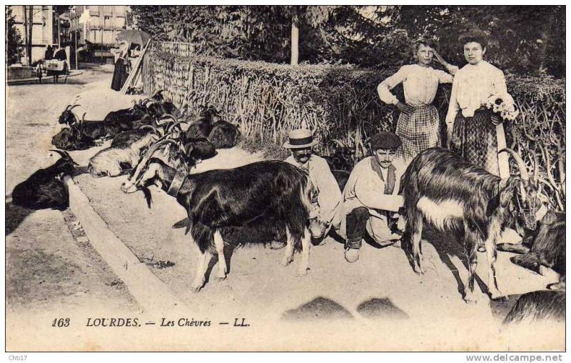 Carte postale ancienne Chevres à Lourdes à Lourdes