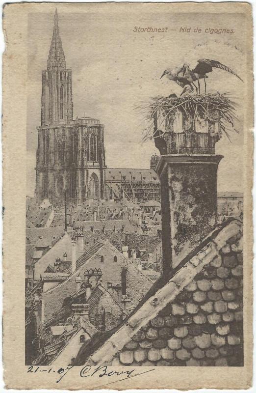Carte postale ancienne 19070121 strassburg storchnest à Strasbourg
