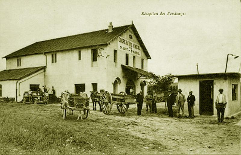 Carte postale ancienne 07 Cave Saint-Just Ardèche à