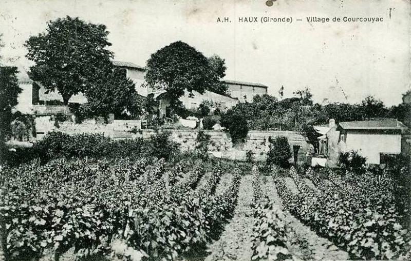 Carte postale ancienne Haux - Courcouyac à