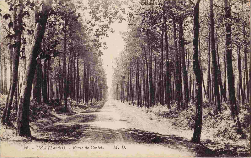 Carte postale ancienne Uza (Landes) - route de Castets 1