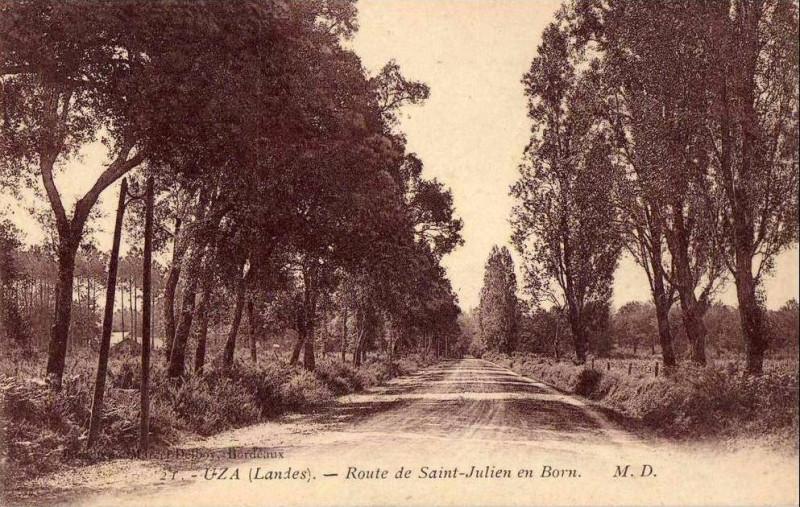 Carte postale ancienne Uza (Landes) - route de Saint-Julien-en-Born à