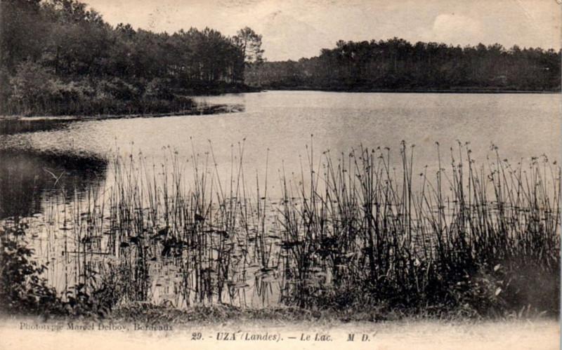 Carte postale ancienne Uza (Landes) - vue sur l'étang 1a