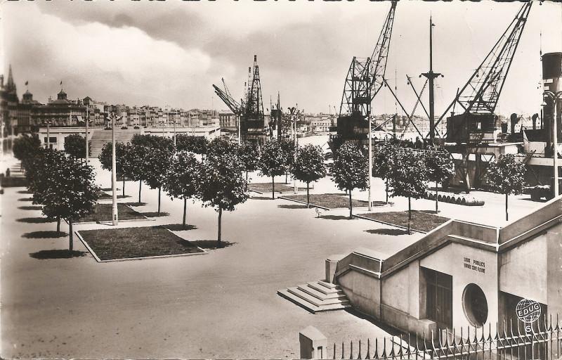 Carte postale ancienne Bordeaux - Les terrasses du port à Bordeaux
