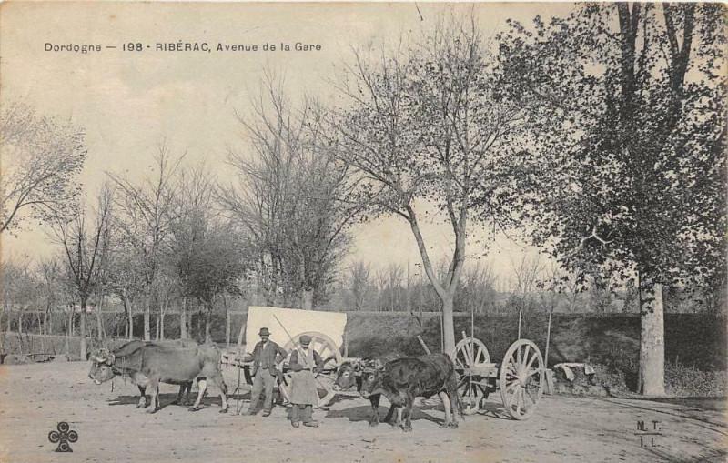 Carte postale ancienne Riberac Avenue De La Gare (attelage animation à Ribérac