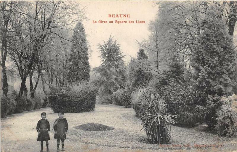 Carte postale ancienne Beaune Le Givre Au Square Des Lions à Beaune