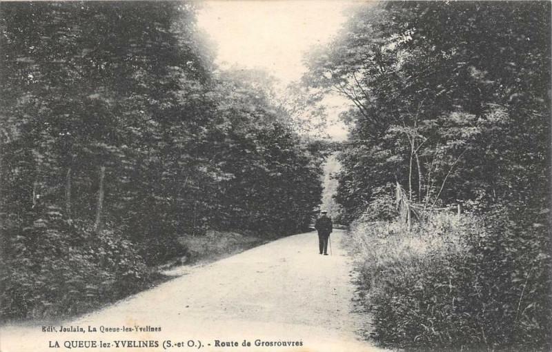 Carte postale ancienne La Queue Lez Yvelines Route De Grosrouvres à Grosrouvre