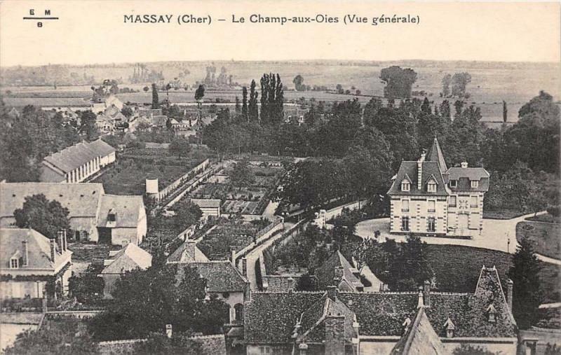 Carte postale ancienne Massay Champs Aux Oies à Massay