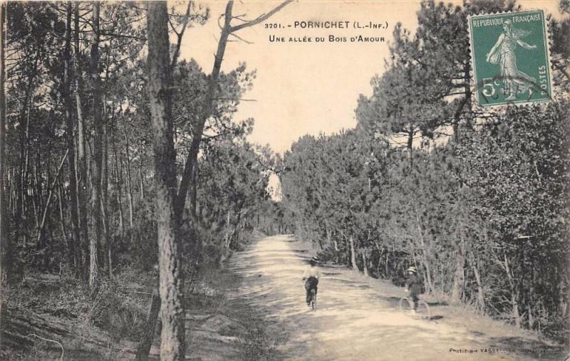 Carte postale ancienne Pornichet Une Allee Du Bois D'Amour à Pornichet