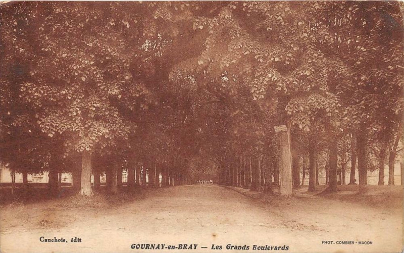 Carte postale ancienne Gournay En Bray Les Grands Boulevards à Gournay-en-Bray