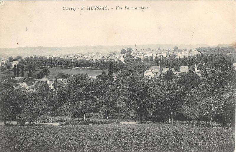 Carte postale ancienne Meyssac Vue Panoramique à Meyssac