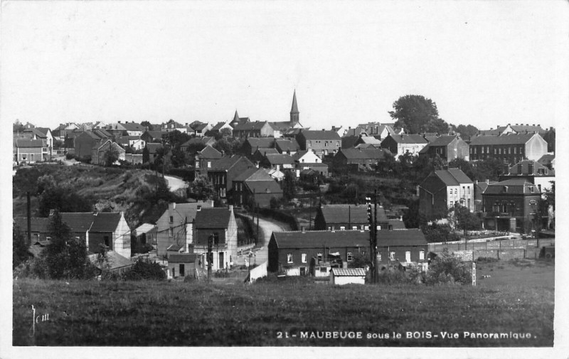 Carte postale ancienne Maubeuge Sous Le Bois Vue Panoramique à Maubeuge