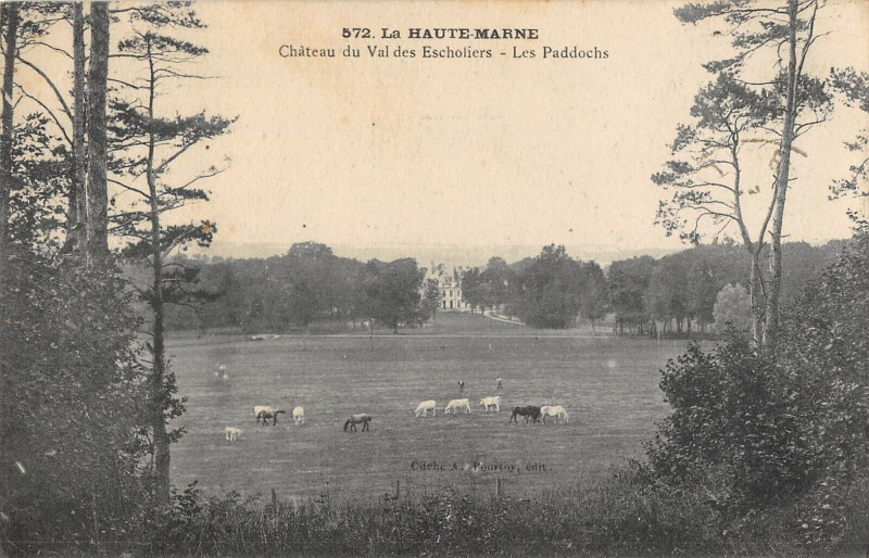 Carte postale ancienne Chateau Du Val Des Escholiers Les Paddochs