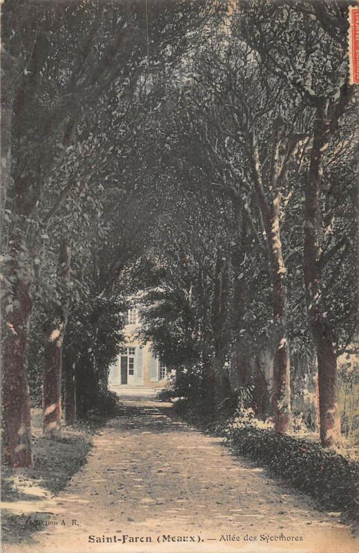 Carte postale ancienne Saint Faren Meaux Allee Des Sycomores à Meaux
