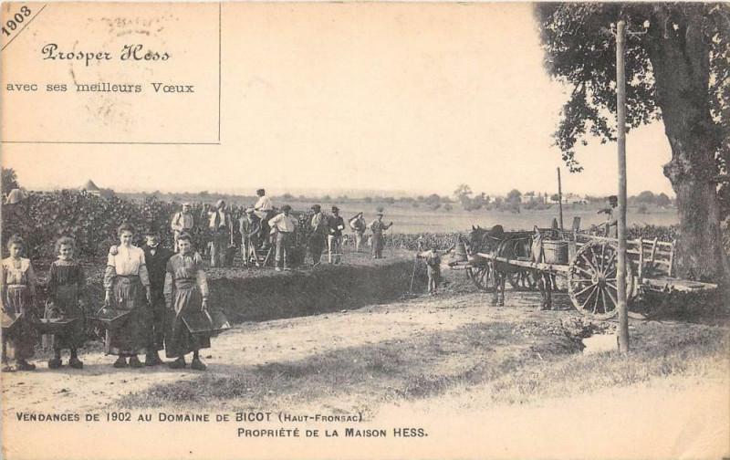 Carte postale ancienne Vendanges De 1902 Au Domaine De Bicot Haut Fronsac Propriete De La Maison à Fronsac