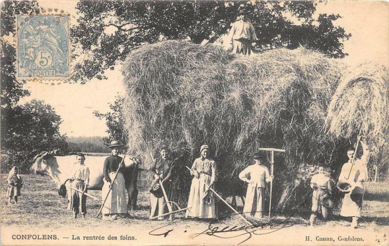 Carte postale ancienne Confolens La Rentree Des Foins (cpa agriculture superbe! à Confolens