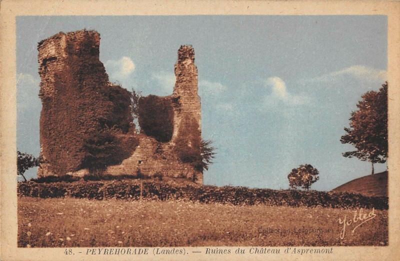 Carte postale ancienne Peyrehorade Ruines Du Chateau D'Aspremonts à Peyrehorade