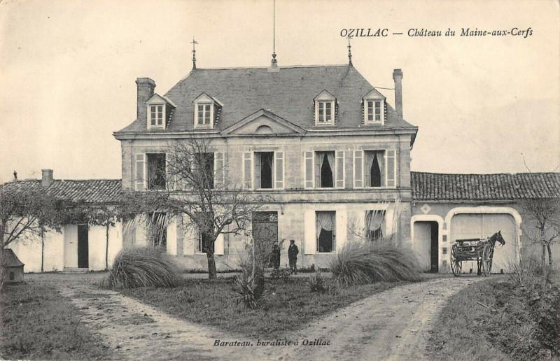 Carte postale ancienne Ozillac Chateau Du Maine Aux Cerfs (cpa pas courante à Ozillac