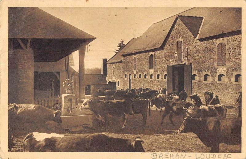 Carte postale ancienne Brehan Loudeac La Ferme à Bréhan