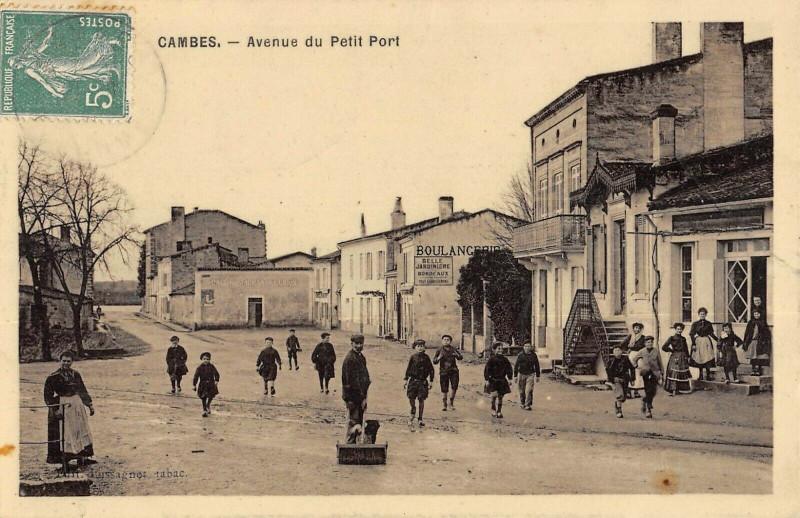 Carte postale ancienne Cambes Avenue Du Petit Port à Cambes