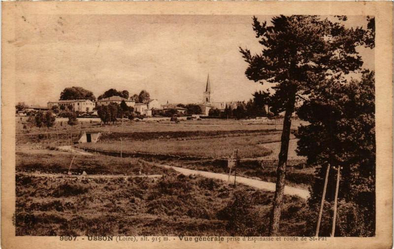 Carte postale ancienne Usson - Usson-en-Forez - Vue Generale France à Usson-en-Forez