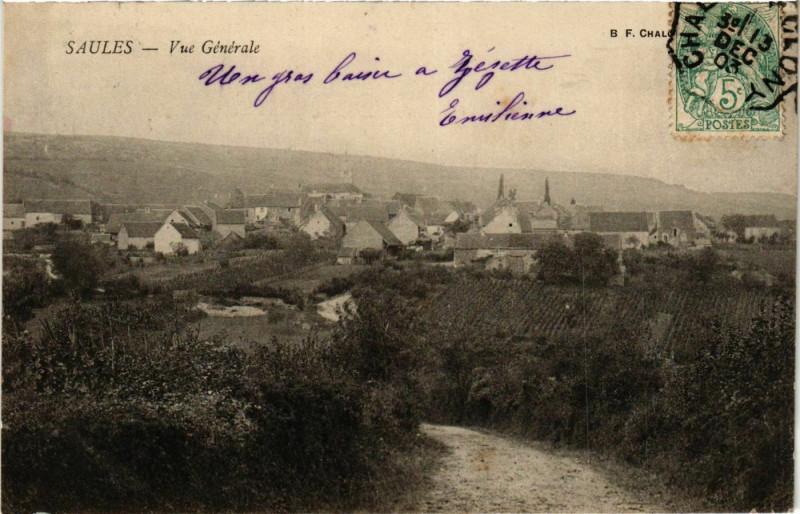 Carte postale ancienne Saules Vue Generale France à Saules