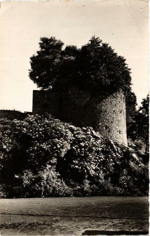 Carte postale ancienne Arnay-le-Duc Tour des anciens Remparts à Arnay-le-Duc