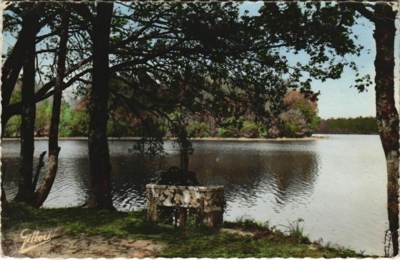 Carte postale ancienne Saint-Estephe - Environs de Nontron - Le Grand Etang à Saint-Estèphe