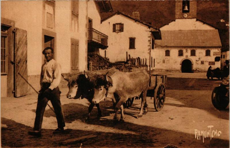 Carte postale ancienne Le Pays Basque - Region de Saint-Etienne-de-Baigorry - Attelage aux... à Saint-Étienne-de-Baïgorry