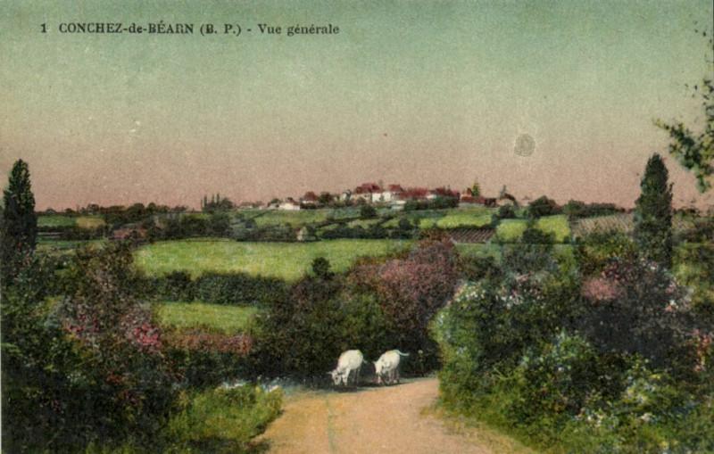 Carte postale ancienne Conchez-de-Bearn (B.P.) Vue générale à Conchez-de-Béarn