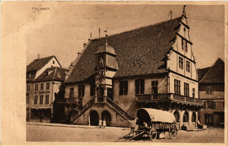Carte postale ancienne Molsheim - Scene à Molsheim
