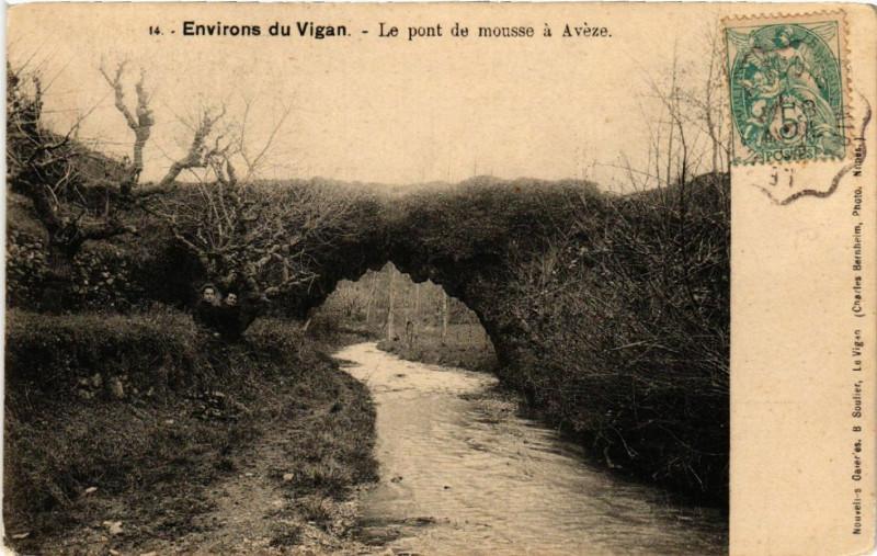 Carte postale ancienne Environs du Vigan - Le Pont de mousse a Aveze à Avèze